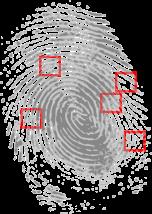 fingerprint-146242_1280